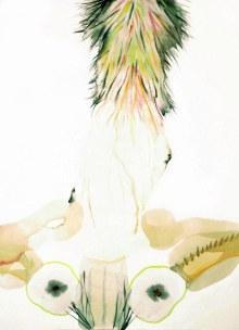 Innesti #13, acquerelli su carta_70x50 cm_2013