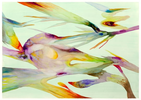 Isabella Nazzarri, Innesti #56, 2016, 50x70cm, watercolor on paper