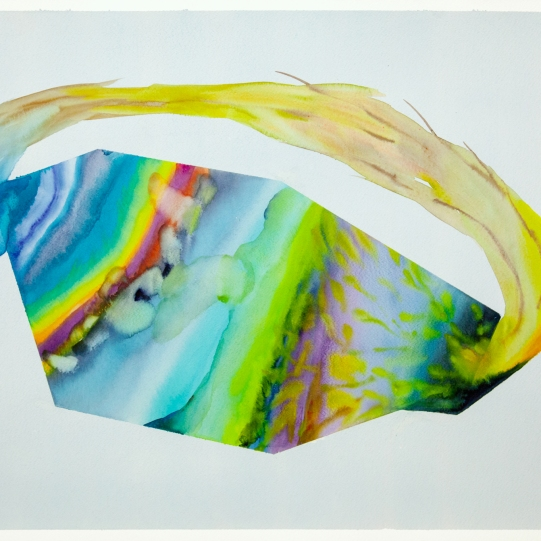 Isabella Nazzarri, Sistema Innaturale #47, 2016, 50x70cm, watercolor on paper