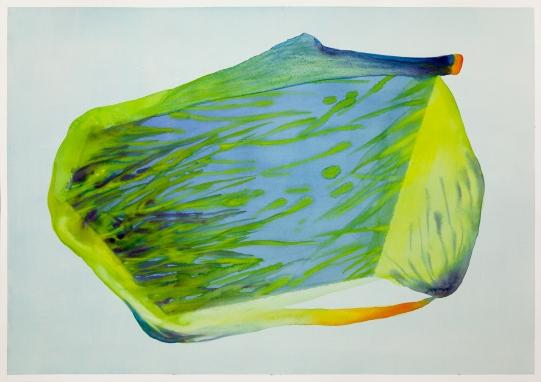 Isabella Nazzarri, Sistema Innaturale #47, 2016, 50x70cm, watercolor on paper1