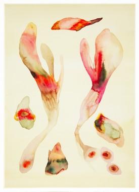 Sistema Innaturale 11, acquerello su carta, 70x50 cm, 2015