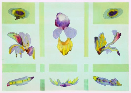 Sistema Innaturale 22, acquerello su carta, 70x50 cm, 2015