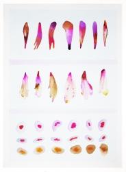 Sistema Innaturale 6, acquerello su carta, 70x50 cm, 2015